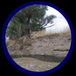 River Rehabilitation