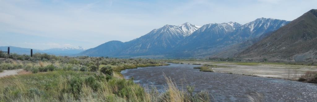 River-Fork